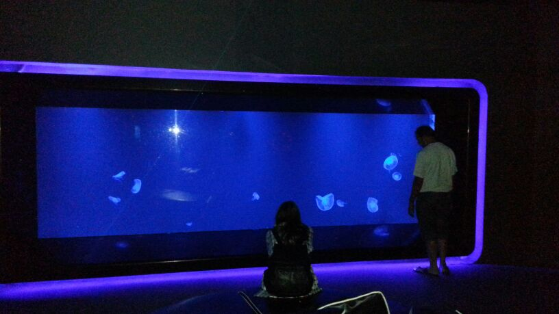 Siam Ocean World - Bangkok