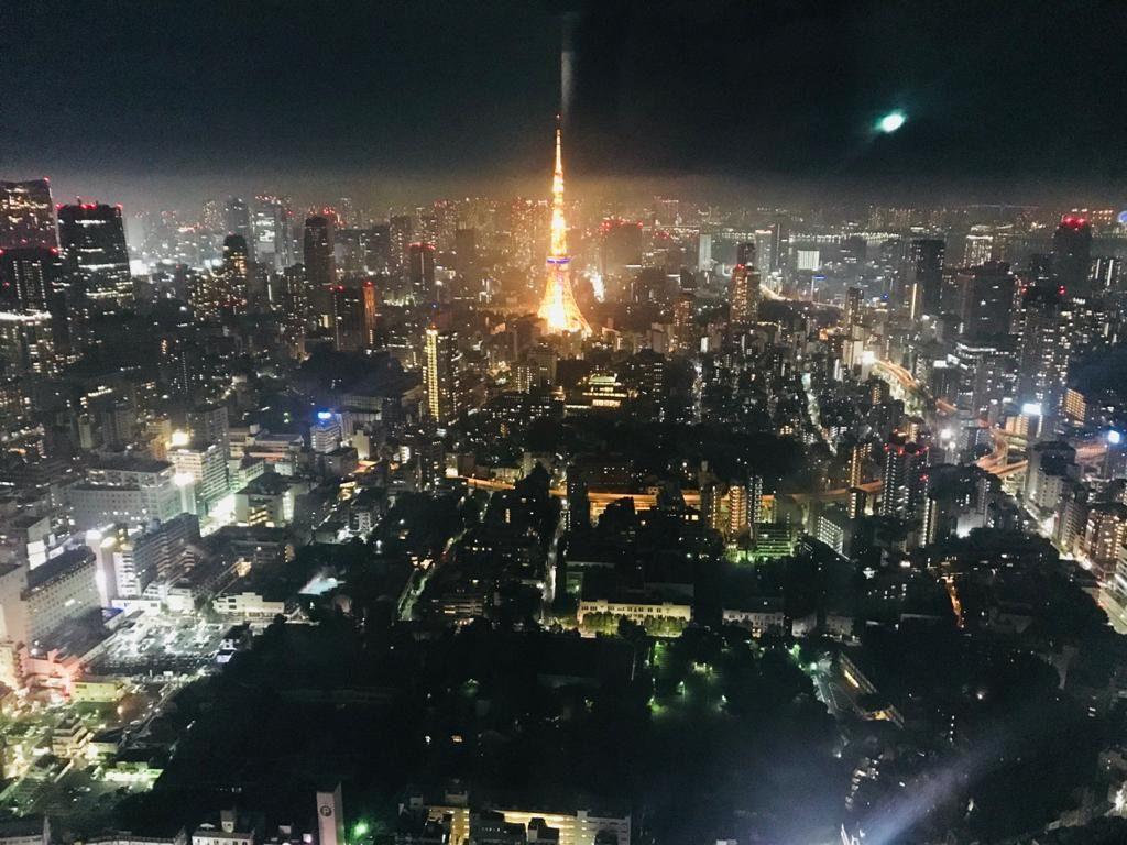 Tokyo City View, Japan