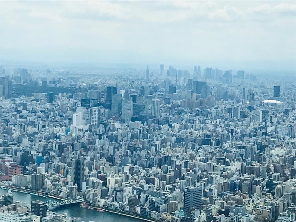 Tokyo Sky Tree Tower View