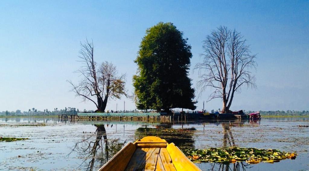 Kashmir 3 Days Itinerary, Char Chinar
