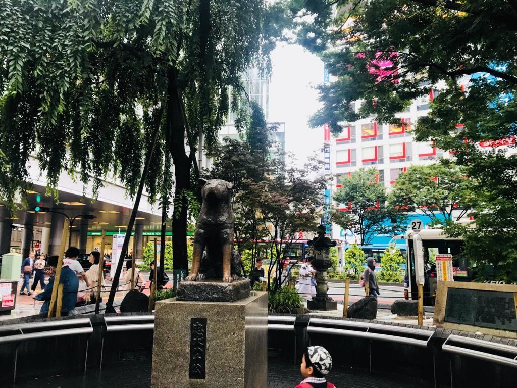 Hachiko Statue Tokyo, Japan