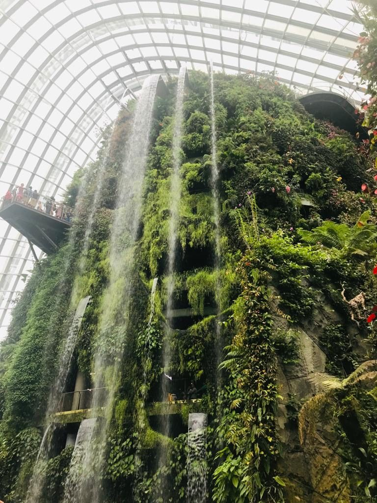 Waterfall - Cloud Forest - Gardens By The Bay